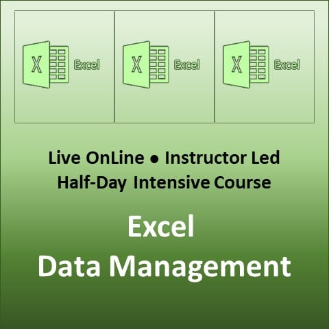 Excel Data Management Course